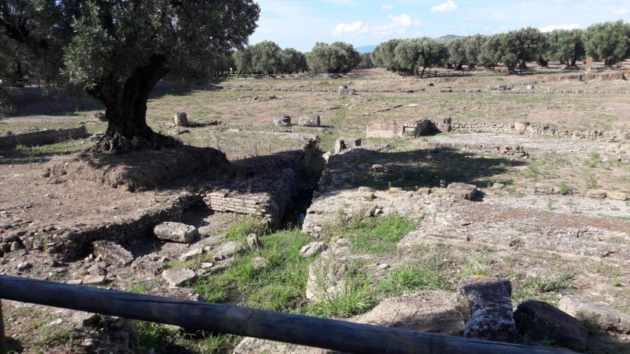Intervento nel Parco Archeologico Scolacium 5086cae8 7323 4184 93a8 b4bd97ed29dc 900x506